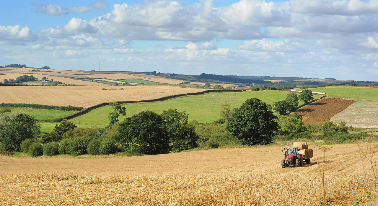Tastes of the Lincolnshire Wolds